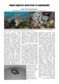 Newsletter #6 Jul 2013 - Page 7