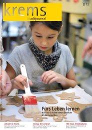 Stadtjournal 8/2013
