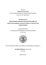 Die Wirkung von Bactericidal/Permeability-Increasing Protein (BPI ...
