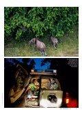 Wildhüter Soho Jocelyn küsst seine Frau, bevor er ... - WWF Schweiz - Page 4