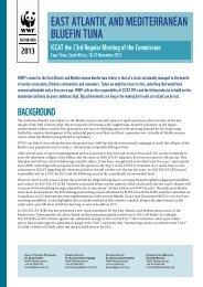 ICCAT 2013 WWF position paper - Panda