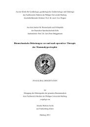 to download the PDF file. - Publikationsserver UB Marburg