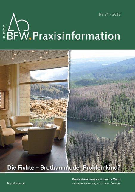 BFW-Praxisinformation 31: Die Fichte