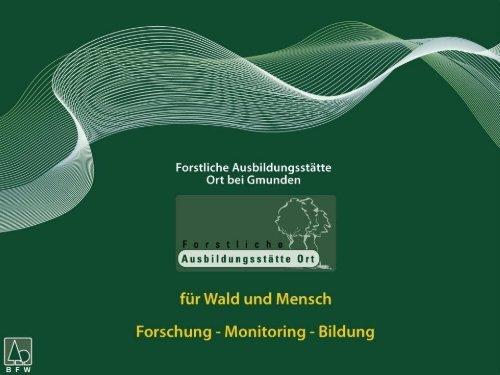 Vortrag Pflanzverfahren - BFW