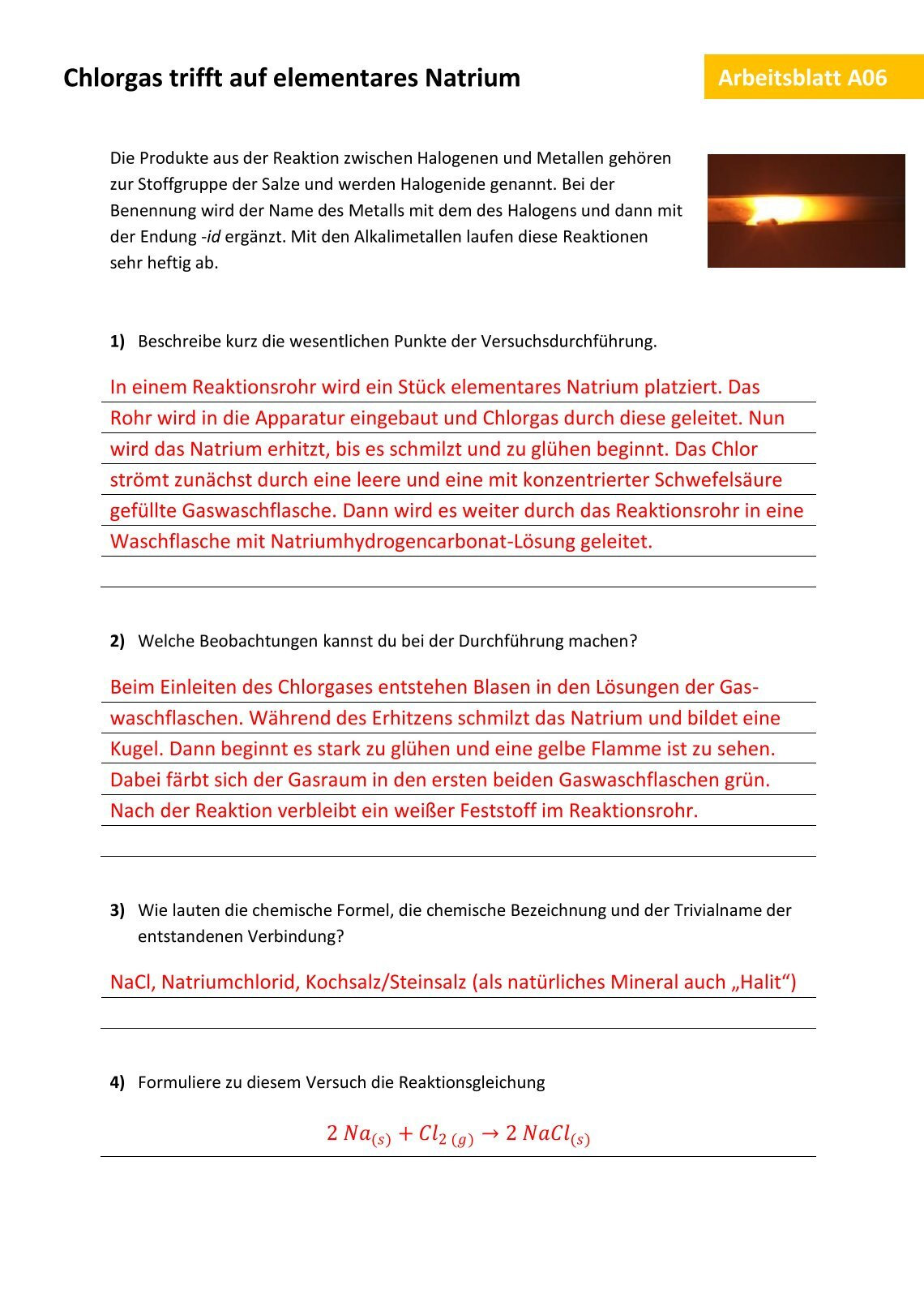 Atemberaubend Arbeitsblatt 14 Monohybrid Kreuz Antworten Ideen ...
