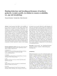 Hunting behaviour and breeding performance of northern ... - CSIC