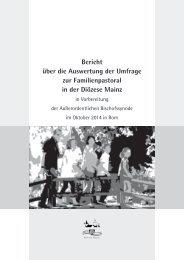 Bericht über die Auswertung der Umfrage zur ... - Bistum Mainz