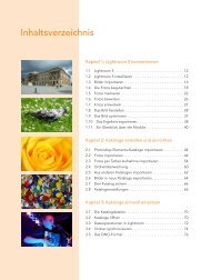 1 Inhaltsverzeichnis