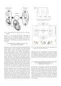 Text anzeigen (PDF) - bei DuEPublico - Universität Duisburg-Essen - Page 2