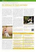 Hundeschnauze - fima-versicherungen.de - Seite 6
