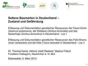 download - Landesbetrieb Forst Brandenburg