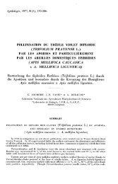 Bestäubung des diploiden Rotklees (Trifolium pratense L ... - HAL