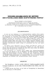 DROHNEN-ANSAMMLUNGEN BEI NESTERN Bei Honigbienen - HAL