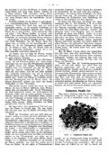 PDF herunterladen - Page 7