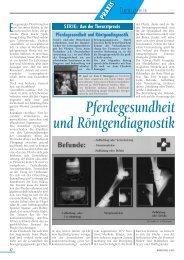 Pferdegesundheit und Röntgendiagnostik