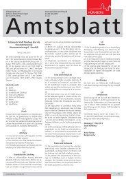 Amtsblatt der Stadt Nürnberg - Ausgabe 11/2013 (29.05.2013)