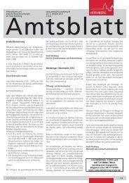 Amtsblatt der Stadt Nürnberg - Ausgabe 20/2013 (02.10.2013)