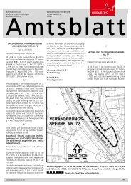 Amtsblatt der Stadt Nürnberg - Ausgabe 13/2013 (26.06.2013)