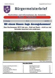 Mit einem blauen Auge davongekommen! Das Hochwasser 2013 ...