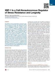 XBP-1 Is a Cell-Nonautonomous Regulator of Stress Resistance ...