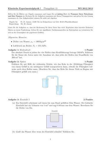 Klassische Experimentalphysik I ¨Ubungsblatt 13 WS 2012/2013 ...