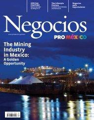 Negocios-ProMéxico-March-2014