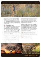Sabi Sand Safari - Page 3