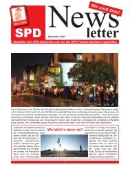 SPD-Newsletter_1213.pdf