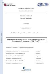 tel-00931647, version 1