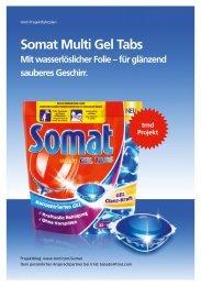 Somat Multi Gel Tabs Projektfahrplan als PDF - trndload