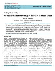 Molecular markers for drought tolerance in bread wheat - Academic ...