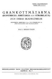 grankottmäta-rna (eupithecia abietaria
