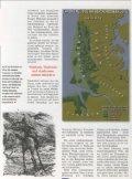die Schlachten der Kimbern, Teutonen, Ambronen - deutschelobby - Page 4