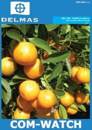 Delmas Com-Watch - Issue 34 - March 2014