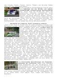 Kult-Fahrzeuge, PS-starke Sportwagen und eine Europa ... - ADAC - Page 2