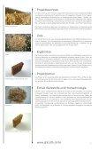 • www.ahb.bfh.ch/fe Werkstoffe und Holztechnologie Projekt ... - Page 2