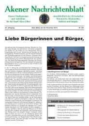 Ausgabe 591 vom 29.11.2013 - Stadt Aken (Elbe)