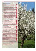 Mai 2013 - Stadt Altdorf - Seite 2