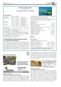 KW 11/2013 - Althengstett - Page 3
