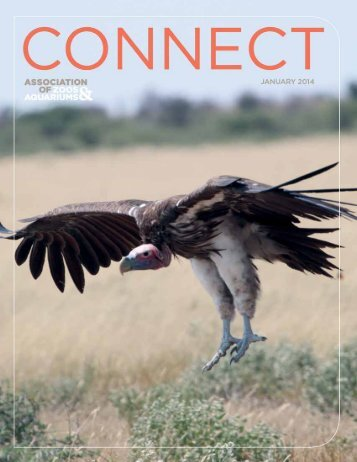 CONNECT Magazine January 2014 - Association of Zoos and ...