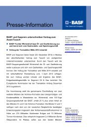 P560/13 - BASF.com