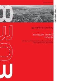 2013-06-25 GV Broschüre [PDF, 4.00 MB] - Bassersdorf