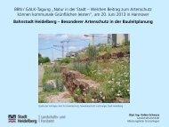 06 Volker Schwarz.pdf
