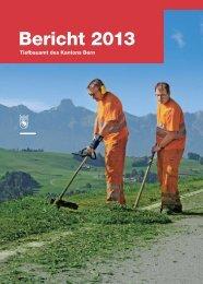 Bericht 2013 - Kanton Bern