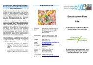 Berufsschule Plus BS+ - Werner-von-Siemens-Schule Cham