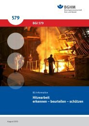 BG-Information 579 - Berufsgenossenschaft Holz und Metall