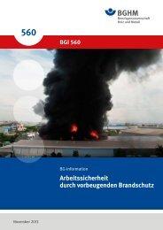 BGI 560 - Berufsgenossenschaft Holz und Metall