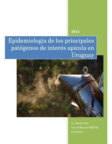 Epidemiología de los principales patógenos de interés apícola en ...