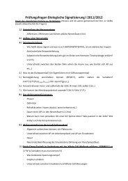 Prüfungsausarbeitung 1