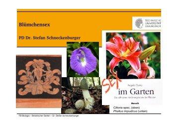 Folien zum Vortrag - Fachbereich Biologie der TU